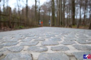 Tour de Flandes 2016 (parte I)